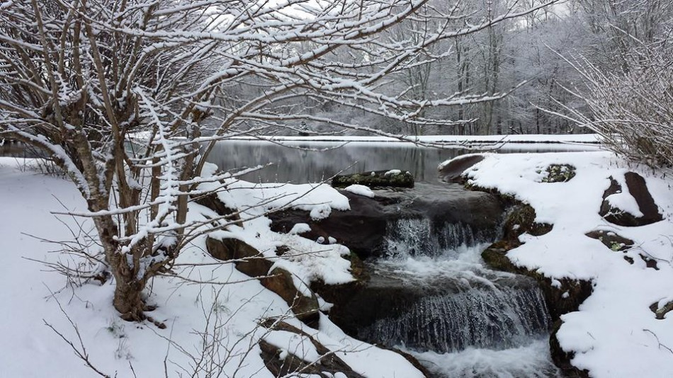 A beautiful pond and waterfall in the winter