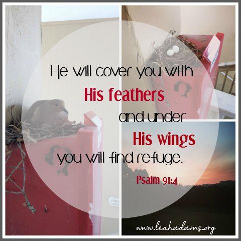 Bird Psalm 91