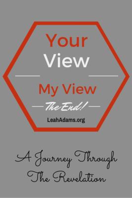 View Revelation