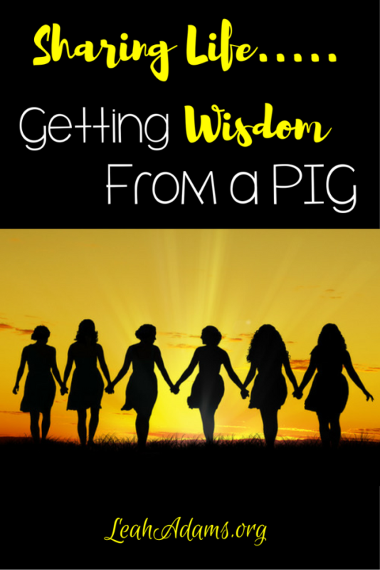 Sharing Life Wisdom from a Pig