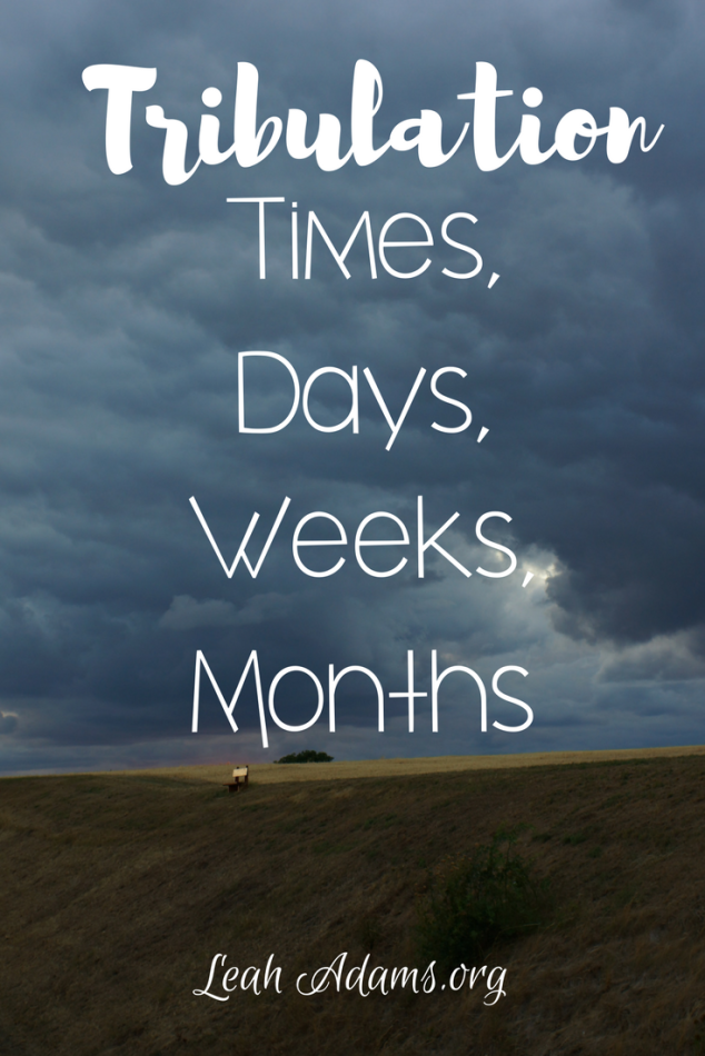 Tribulation Times, Days, Weeks, Months