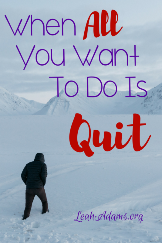 When All You Want to Do is Quit