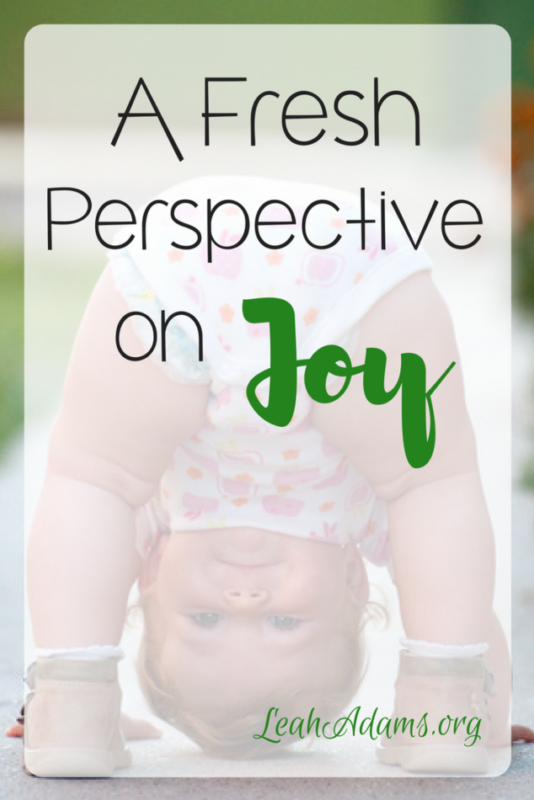Fresh Perspective on Joy